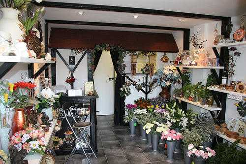 FLORIST AND GIFT SHOP BUSINESS FOR SALE